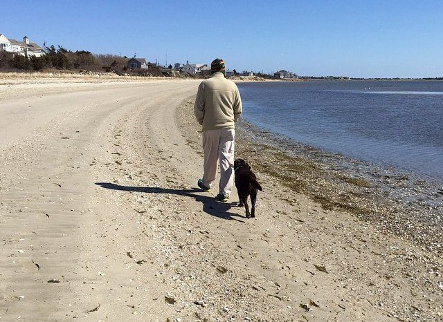 Man walking with his dog on cape cod beach.